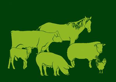 Neue Rezension: Tierwohl & Tierethik